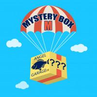 AngelGarageDE Mystery Box Überraschungsbox Zubehör Angelbedarf M Raubfisch